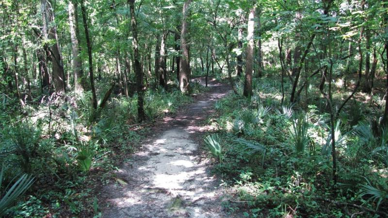 Nature Trail at Madison Blue