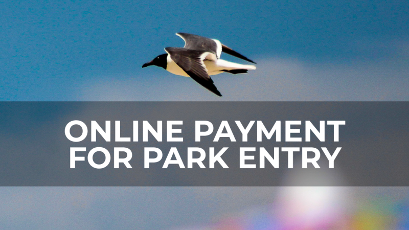 Online Payments for Park Entry