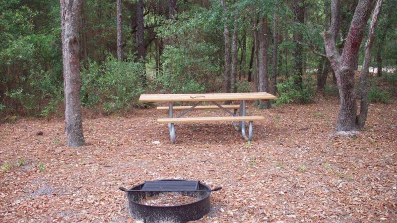 Campground picture with fire ring