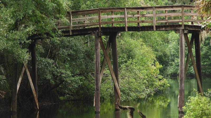 Suspension Bridge at Hillsborough River State Park