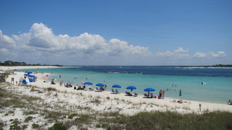 Dr  Julian G  Bruce St  George Island State Park | Florida State Parks