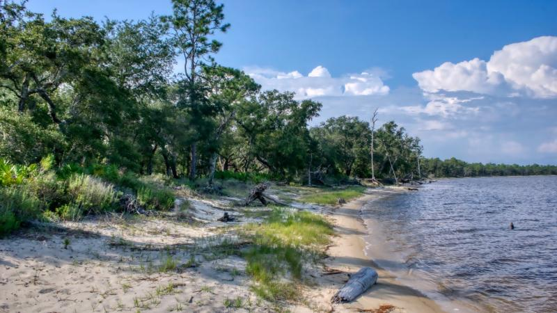 Wet-prairie landscapes surround a picturesque coastal bayou teeming with rare plant and animal species