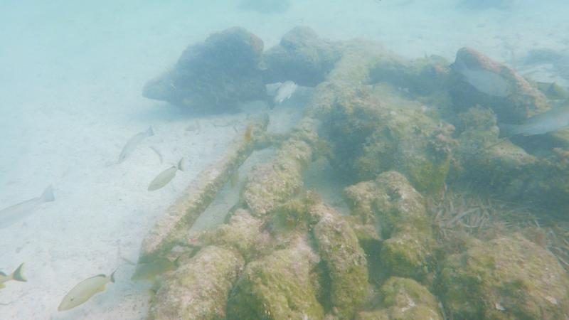 Anchor on the San Pedro Wreck