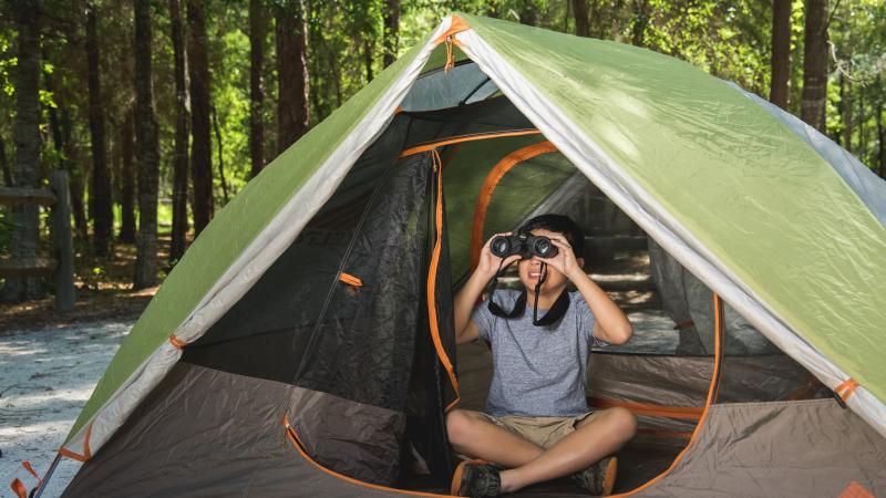 Young boy peers through binoculars from the inside of a tent.