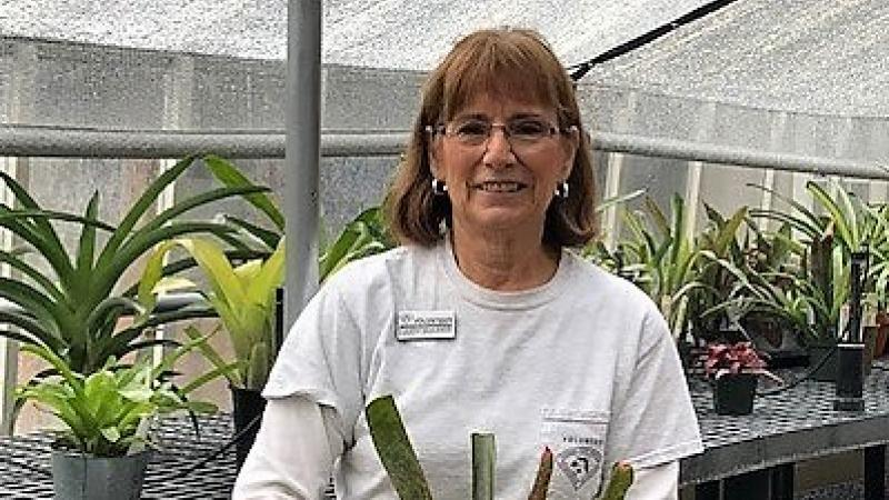 Judy smiling and holding a plant in the greenhouse