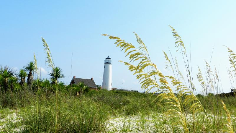 a white lighthouse behind sea oats and sand dunes