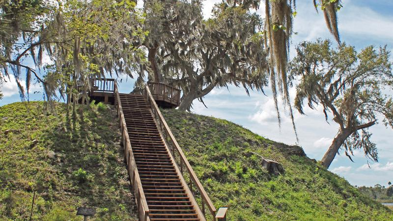 a long set of stairs leads up a large hill to an observation platform, surrounded by trees draped with spanish moss.