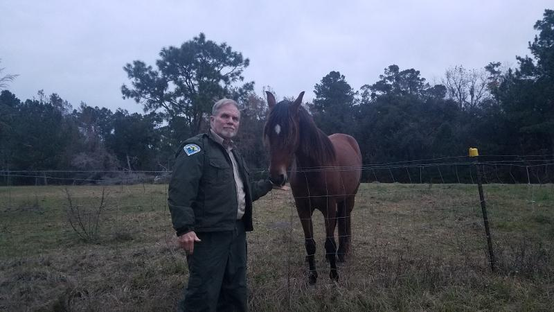 Image of Robert Dampman, Devil's Millhopper Park Manager, standing ina field petting a horse.