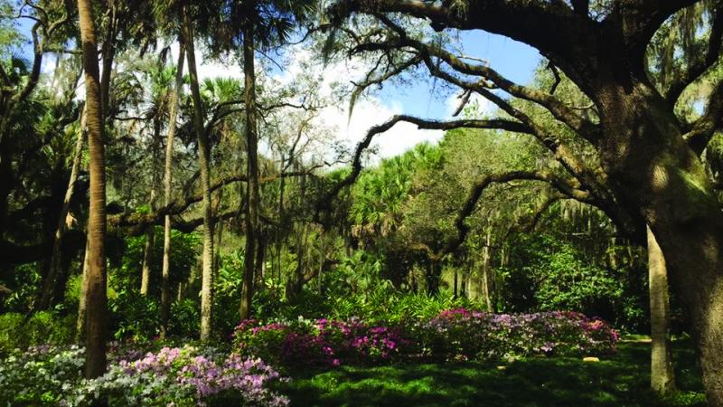 Washington Oaks Gardens