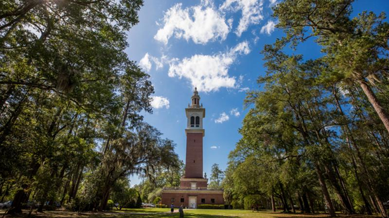 a brick tower stands amongst pine trees under a blue sky