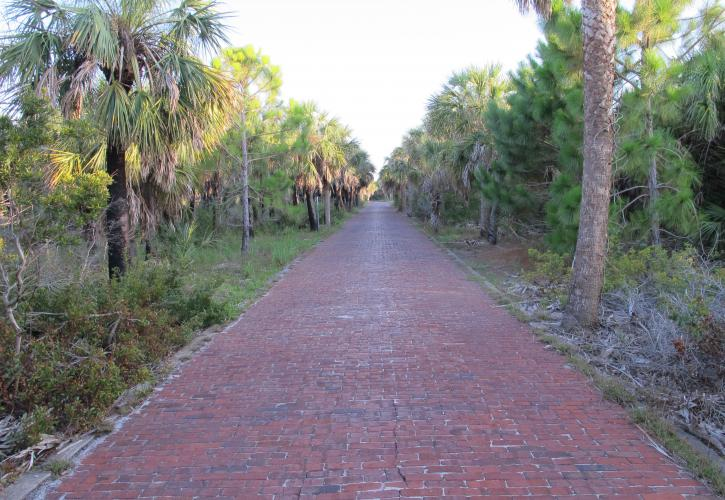 Historic Road Egmont Key