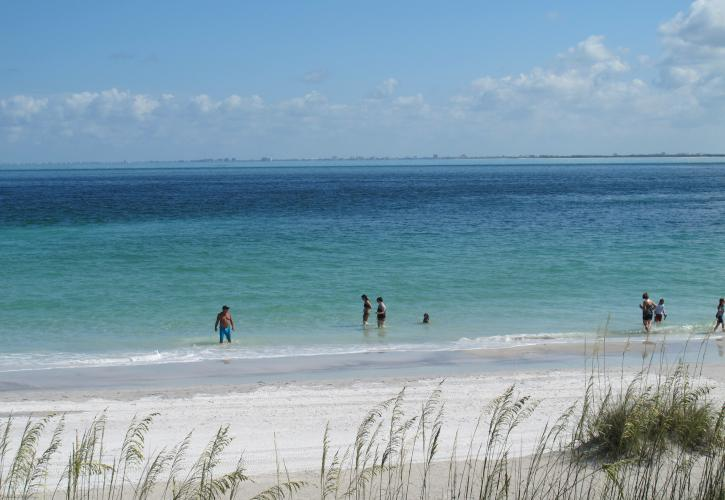 Beach at Egmont Key