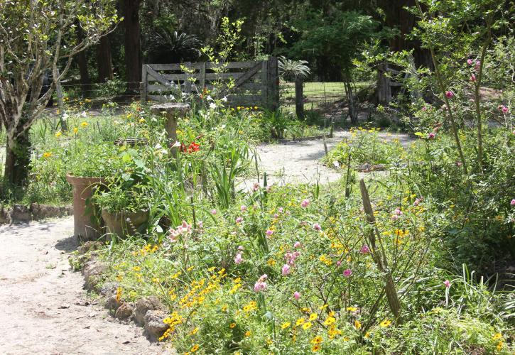 Garden at Dudley Farm