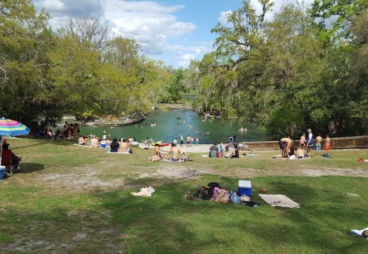 Wekiwa Springs with visitors enjoying the spring view