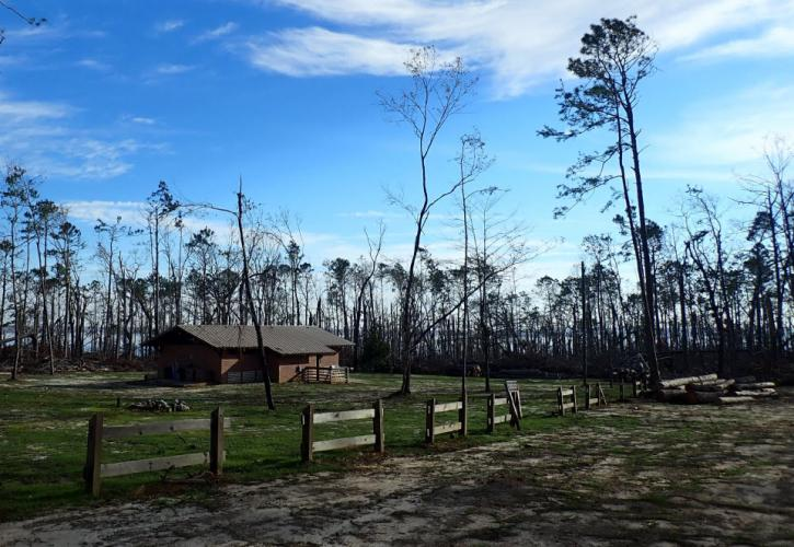 A current view of the group camp, post hurricane recovery efforts.