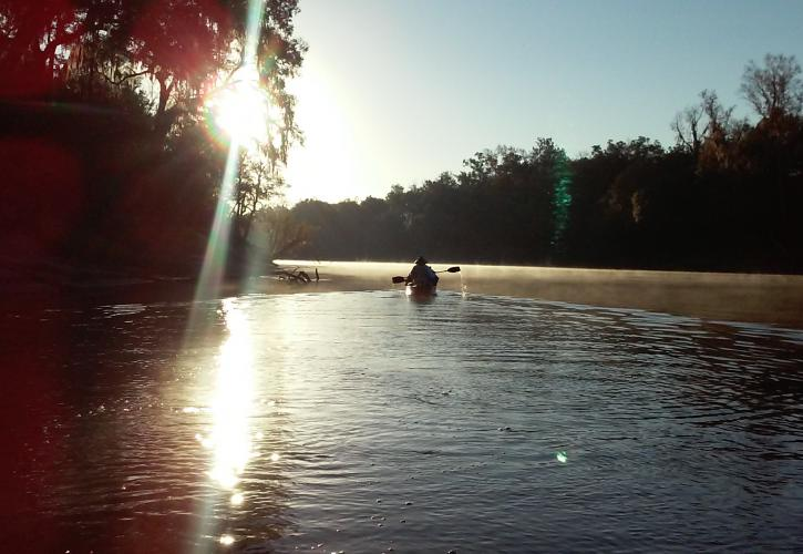 Suwannee River Wilderness