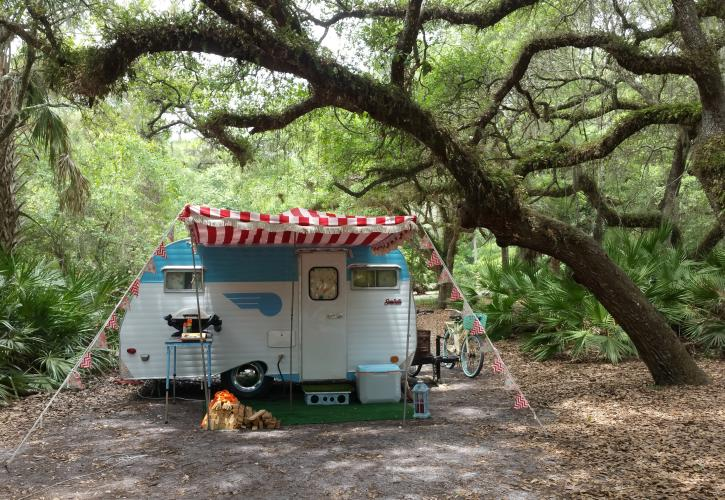 Lake Kissimmee State Park   Florida State Parks on kissimmee fl, kissimmee zip code 34741, kissimmee florida street map, kissimmee florida on map, kissimmee florida weather map,