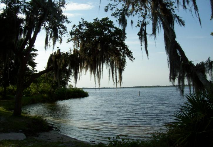 A view of Lake Manatee through the trees.