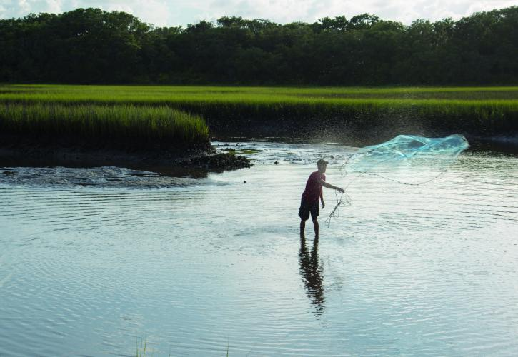 Fisherman casting a net in the marsh