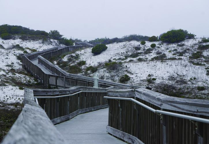 Boardwalk over dunes