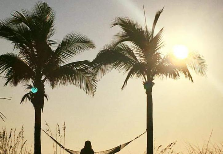 A view of someone standing between two palm trees at sunset.