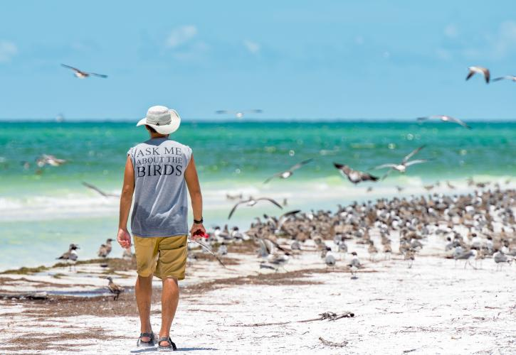Birder walking on the beach