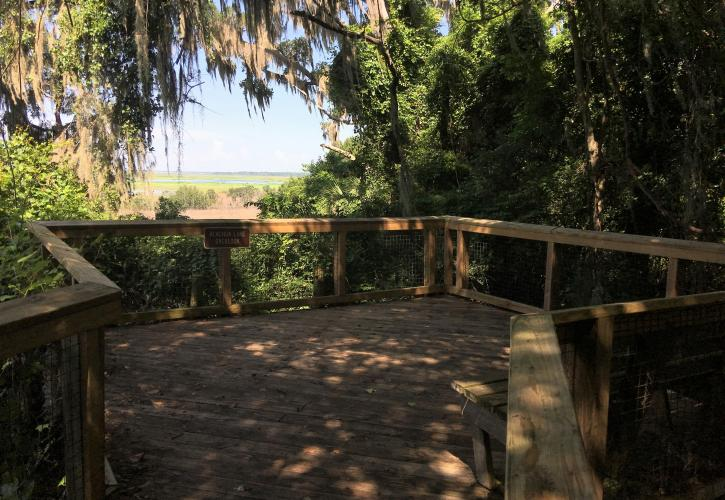 Alachua Lake Overlook Gainesville Hawthrone Trail
