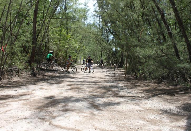 Bicyclers on Trail