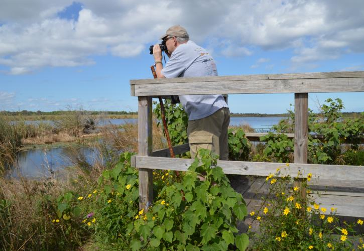 Savannas Preserve Bird Watching