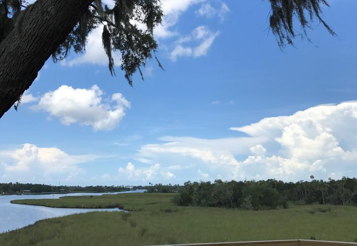 Daylight Clouds from the Mounds at Crystal River Archaeological State Park