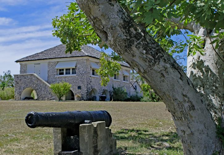 A cannon sits by a tree on the lawn of the Matheson House.