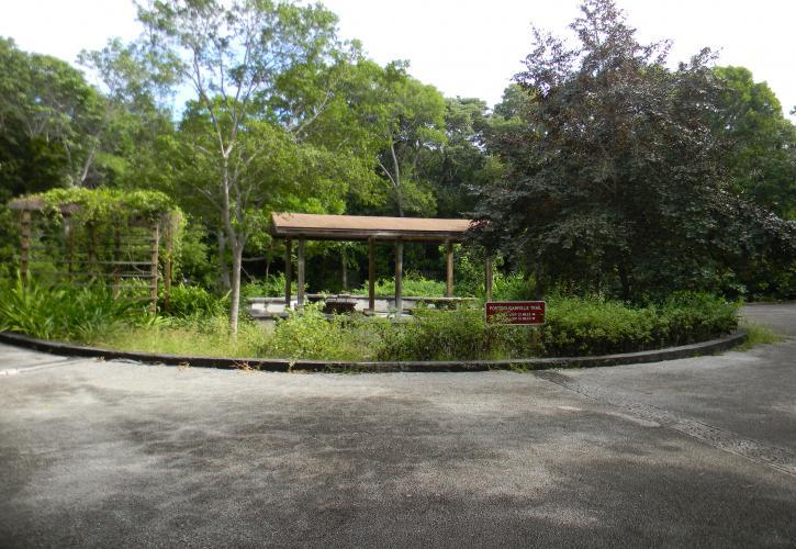 Dagny Johnson Key Largo Hammock Botanical State Park | Florida State ...