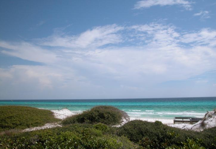 Vegetated dunes meet white sandy beach and emerald green waters.