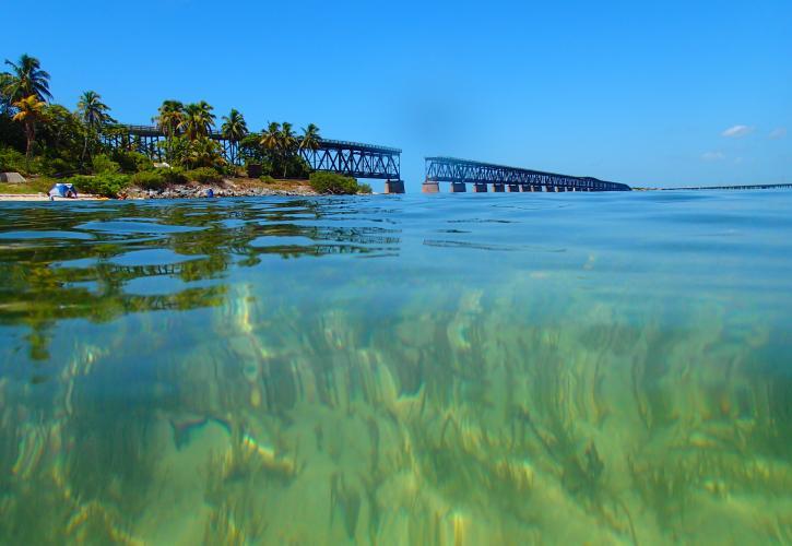 View From Underwater Sea Gr Looking Towards Bridge