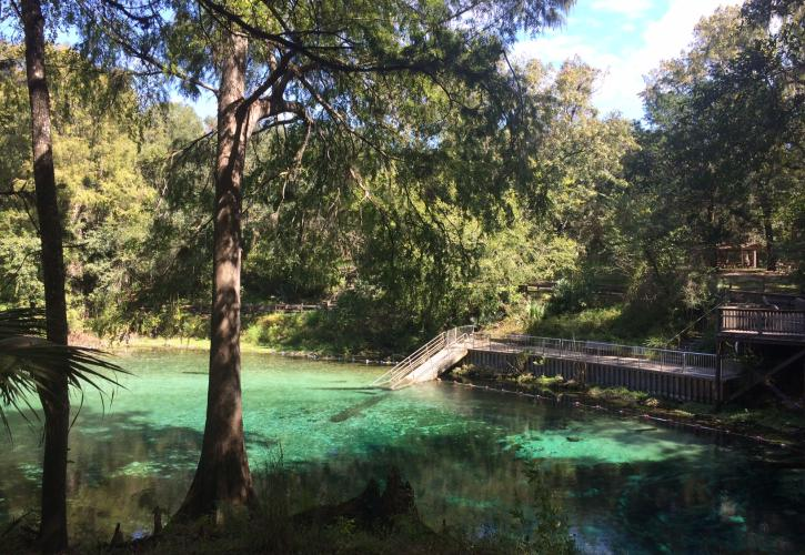 Fanning Springs State Park Florida State Parks