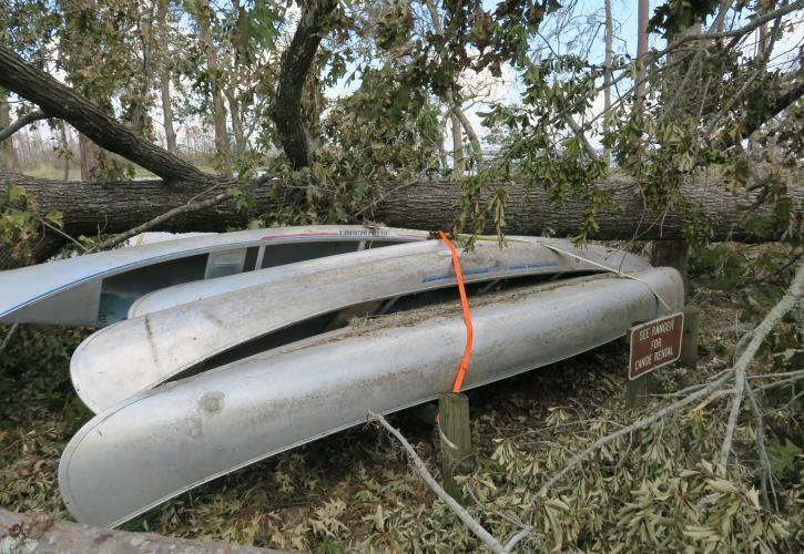 Three Rivers Hurricane Damage Canoes