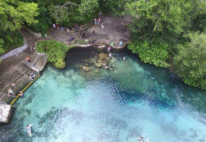 Ichetucknee Springs Swimming Area
