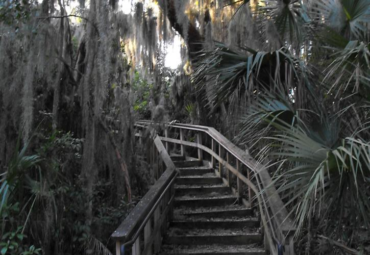 A view of the stairs leading up to the burial mound.