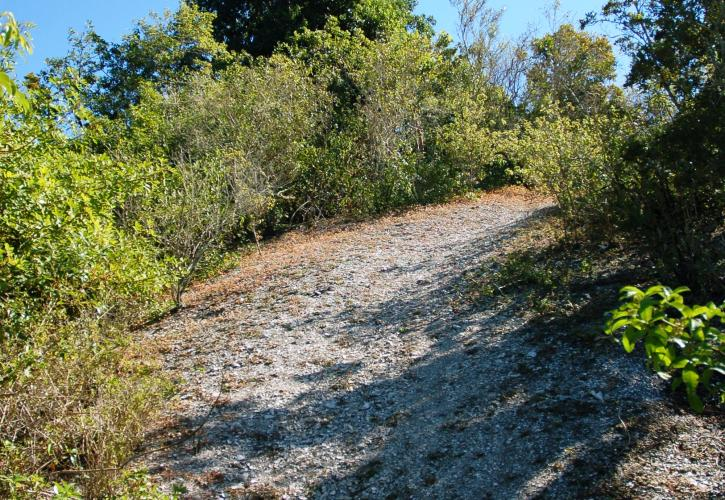 Mound Key Archaeological State Park