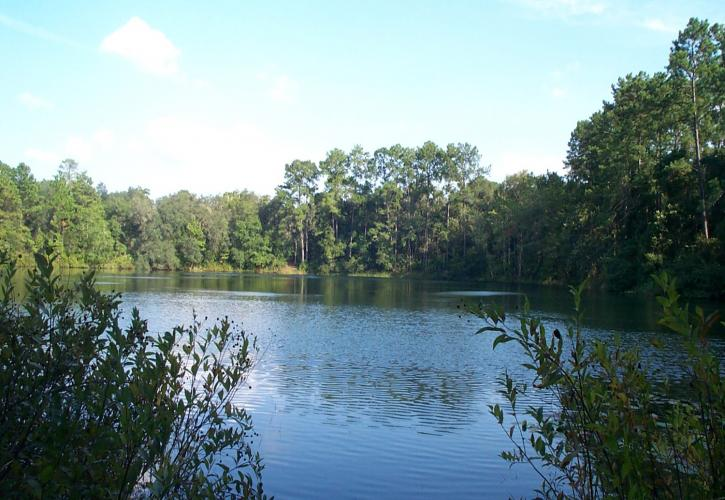 Blue Pond at Dunns Creek