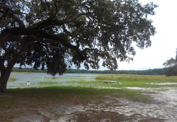 Picnic Area Lake View at Fort Cooper