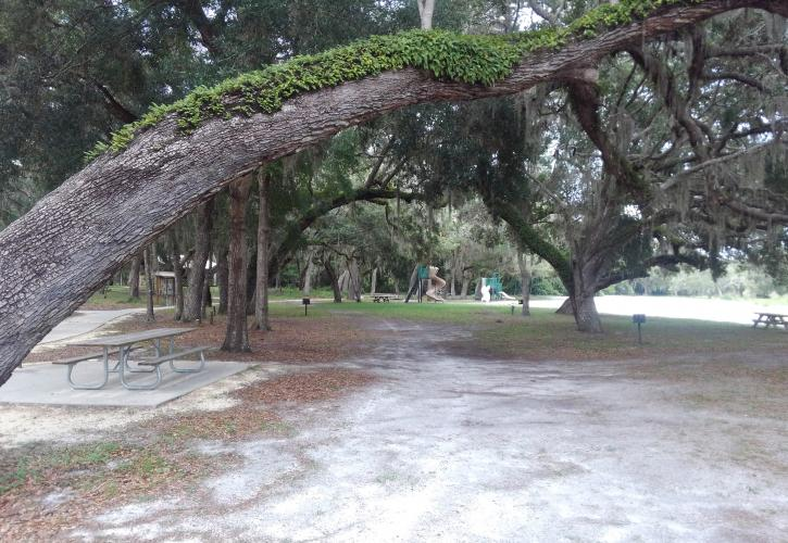 Picnic Area at Fort Cooper