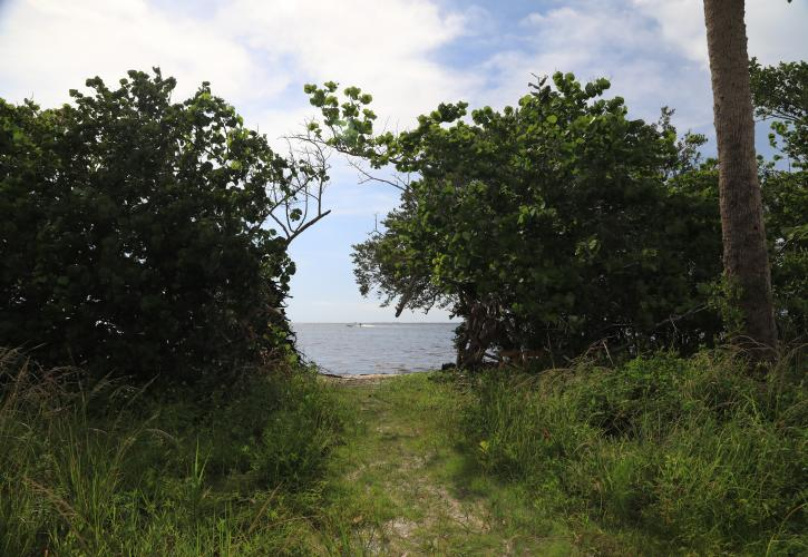 Charlotte Harbor Preserve Trail to the Bay