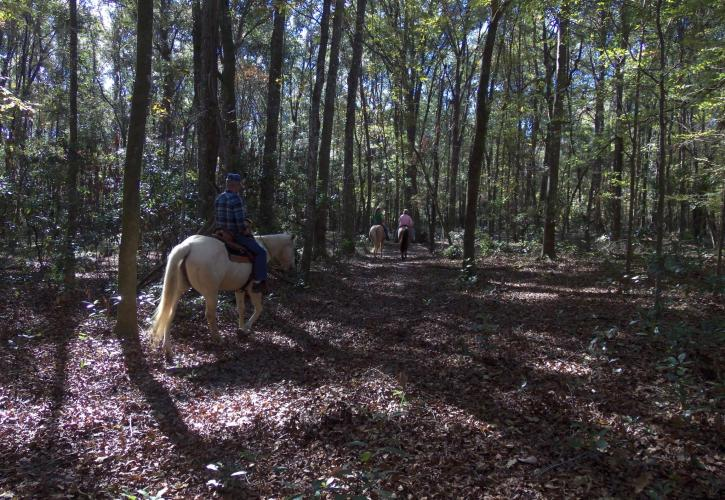 River Rise Preserve Riders on Trails
