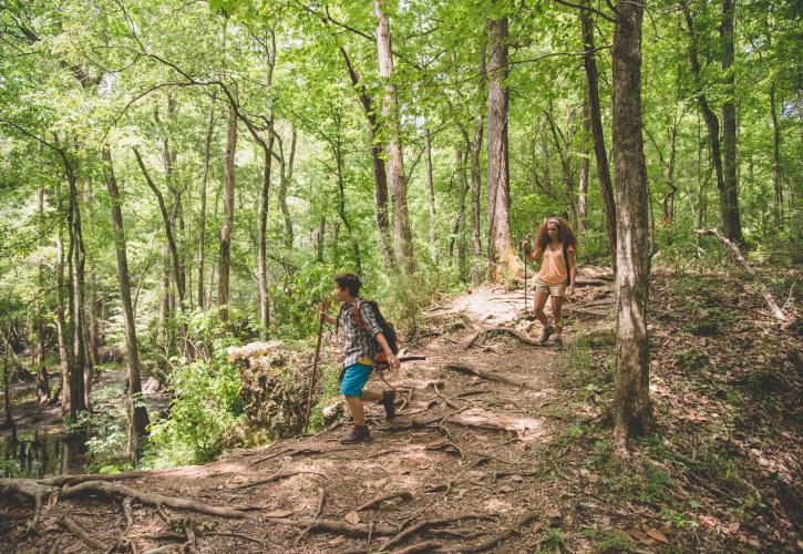 Two children hiking on the trail