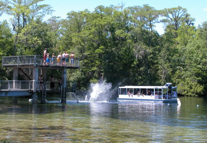 Diving tower at Wakulla Springs