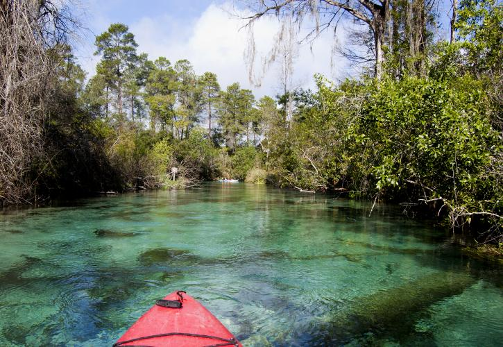 Paddling down the Weeki Wachee River