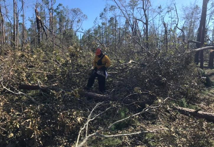 Three Rivers Hurricane cleanup