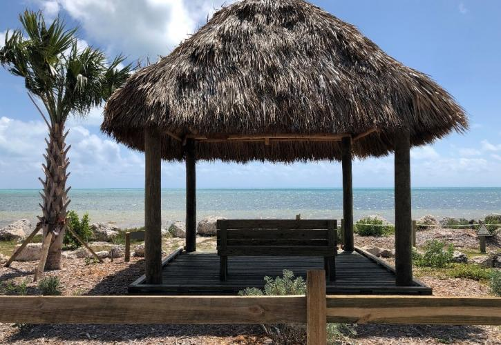 A view of the newly built tiki hut.