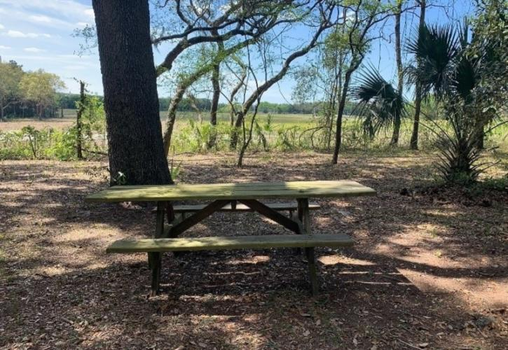 a picnic table sits in a clearing under trees